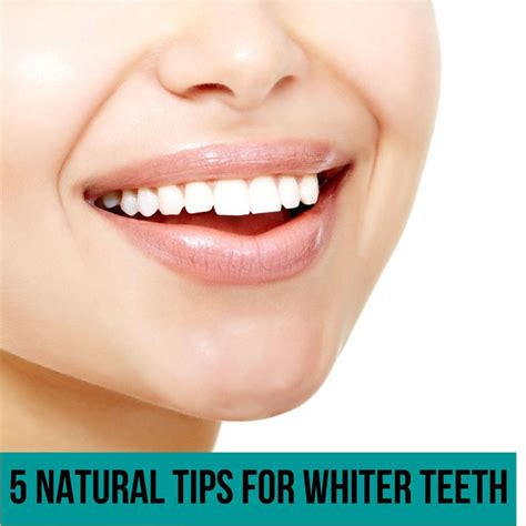 5 Tips For Whiter Teeth by 13 Best Teeth Images On Tips