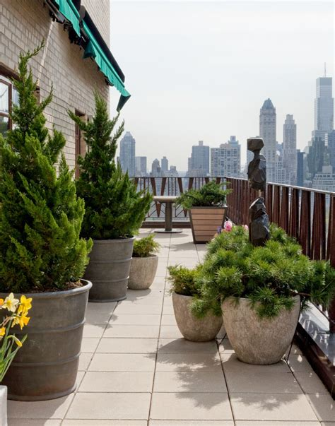 Evergreen Planters by Jungle How To Turn Your Terrace Into An Oasis