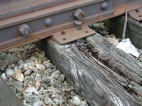 Railway Sleepers Wood Type by Three Types Of Rail Sleepers And Their Own Features