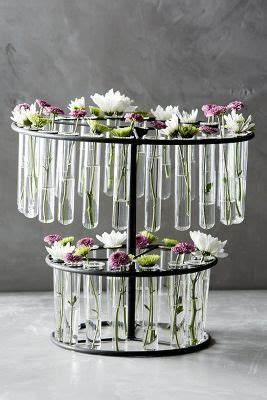 Laboratory Flower Vases by Vase Anthropologie And Test On