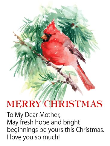 red cardinal merry christmas wishes card  mother birthday greeting cards  davia