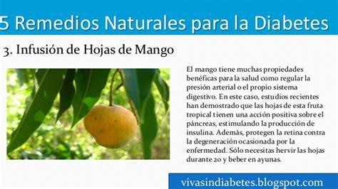remedios naturales para enfermedades inediacom remedios y hierbas naturales para controlar la diabetes