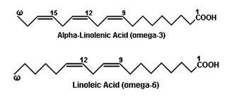 alimenti omega 6 acidi grassi polinsaturi chimicamo org