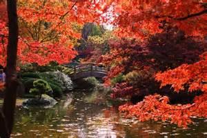 Fort Worth Japanese Gardens by Japanese Garden Ft Worth Ft Worth
