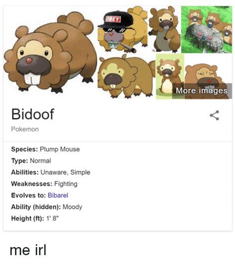 Bidoof Meme - pokemon bidoof meme images pokemon images