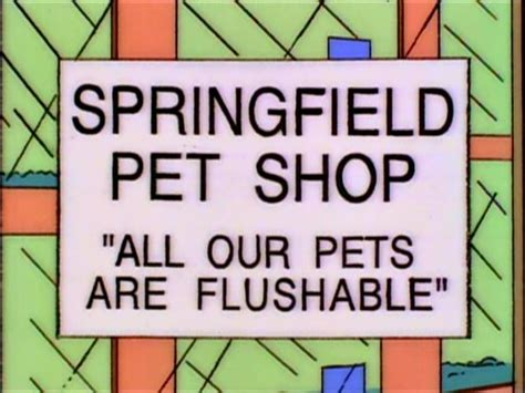 springfield pet shop simpsons wiki fandom powered by wikia