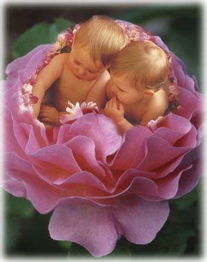 Set Delisa Flower 211 best images about geddies dolls on