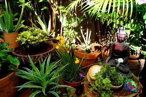 Indian Garden Design Beautiful Indian Balcony Garden Designs