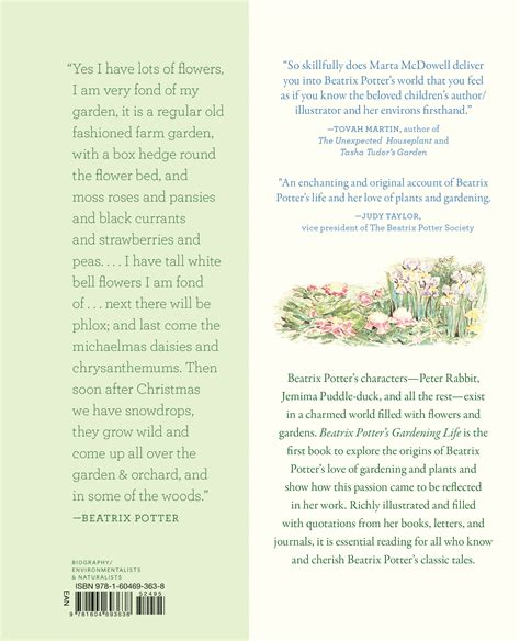 plant potters 100 plant potters how to plant evergreens in