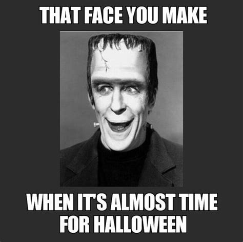 Halloween Meme - 1000 ideas about funny happy birthday pictures on