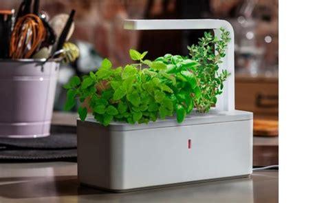 indoor garden maintenance click and grow low maintenance indoor vegetable and herb