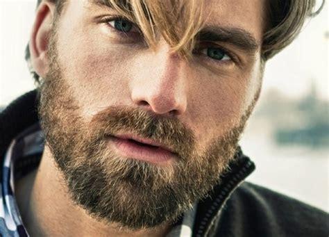 www cara eu queria n 227 o me importar a vida com barba 233 mais bonita