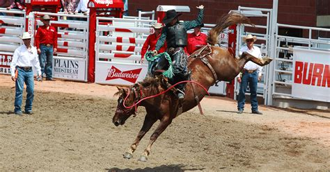 Mibil Rodeo rodeo events tickets calgary stede