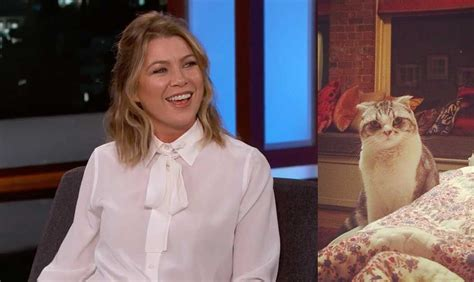 ellen pompeo taylor swift cat ellen pompeo is allergic to cats and is not a part of