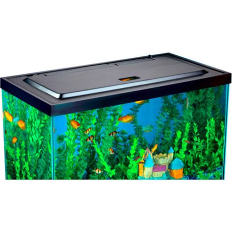 fish tank cover with light tropical fish tank kit 3 gallon betta home aquarium led