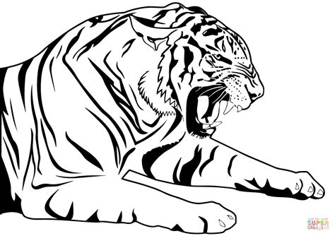 tiger coloring page tiger coloring page free printable coloring pages