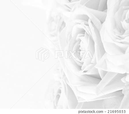Wedding Background And White by Wedding Background Black And White Pertamini Co