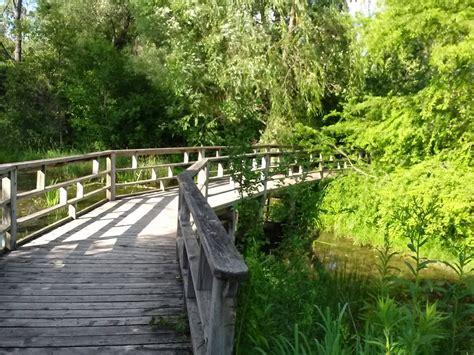 debonair david matthaei botanical gardens