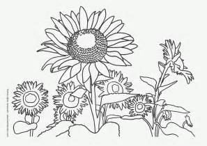 nature coloring pages nature coloring pages for