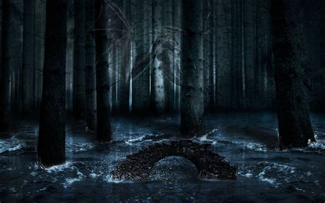 libro walking in a winter dark forest wallpapers wallpaper cave