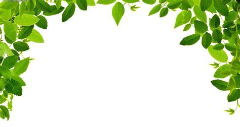 mature flower diagram clip art at clkercom vector clip search results for greek flowers clipart calendar 2015