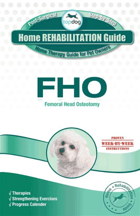 Detox Recovery Powder Dr Jeff Vet Recommended For Liver by Fho Home Rehab Guide Topdoghealth