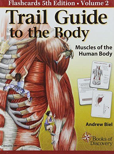 libro the concise human body trail guide to the body how to locate muscles bones and more anatomia panorama auto
