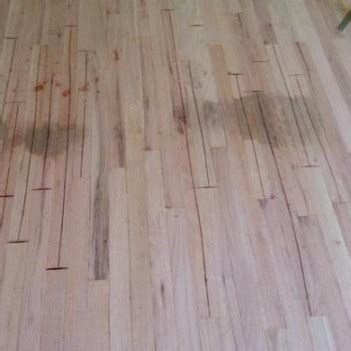 How To Get Urine Stains Out Of Hardwood Floors by Luxury How To Get Stains Out Of Hardwood Floors Wildwoodrooms Co