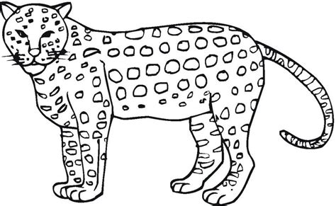 jaguar coloring pages for kids az coloring pages