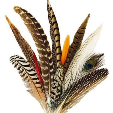 www feather dreamcatcher online shop feather bouquets