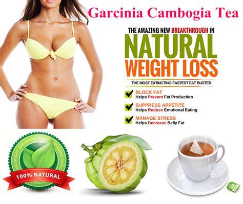 Garcinia Cambogia Detox Tea by Garcinia Cambogia Tea Bags For Weight Loss Block