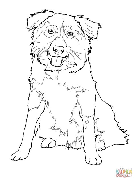 Border Collie Coloring Page Free Printable Coloring Pages