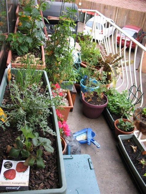 apartment gardening ideas container gardens  apartment