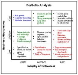 Portfolio Analysis Template by Mckinsey Ge Matrix Software For Product Portfolio Analysis
