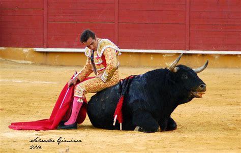 imagenes artisticas de toros cordoba taurina respeta al toro respeta la tauromaquia