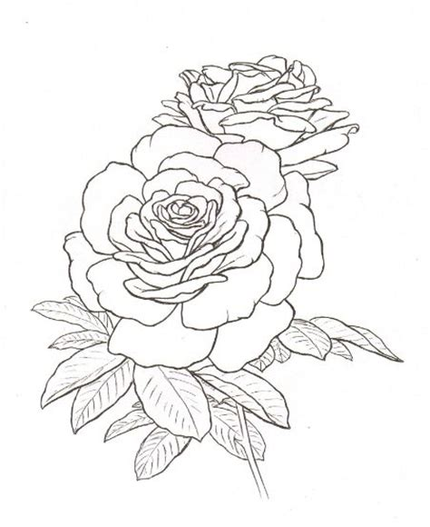 realistic rose coloring page best photos of realistic rose coloring pages flower
