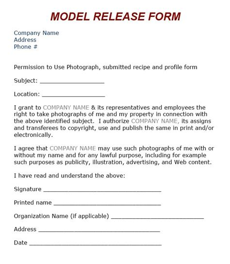 Model Release Template by Task 2 Hayeon S Page