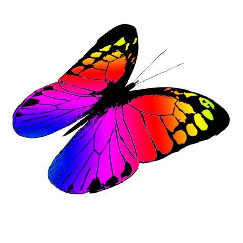 free butterfly clipart butterfly clipart 7 clipartix