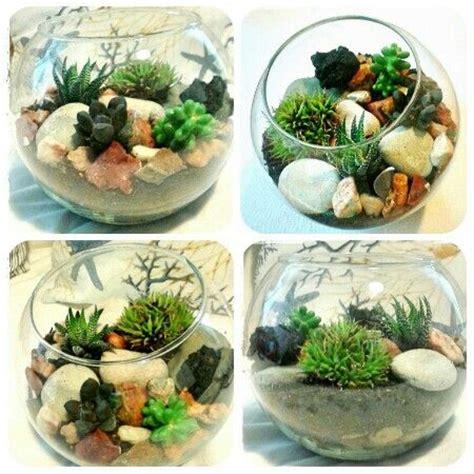 composizione piante grasse in vaso pi 249 di 25 fantastiche idee su composizioni di piante