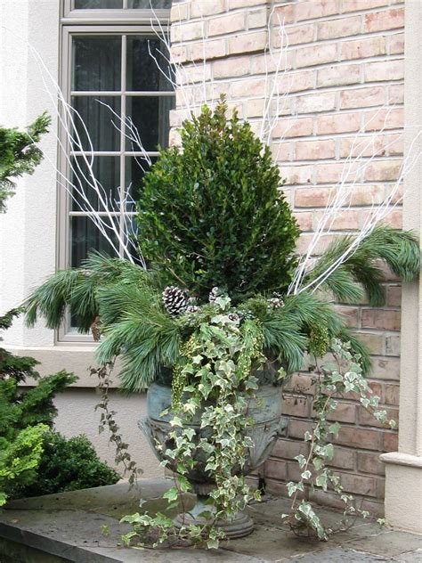 outdoor winter planter ideas the designer s muse winter planters