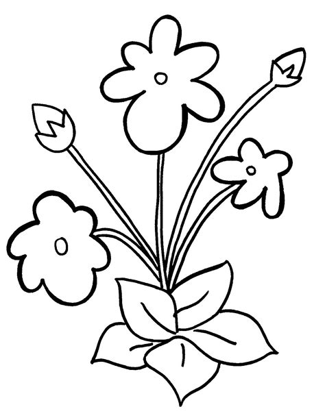 african violet coloring page coloring pages for free