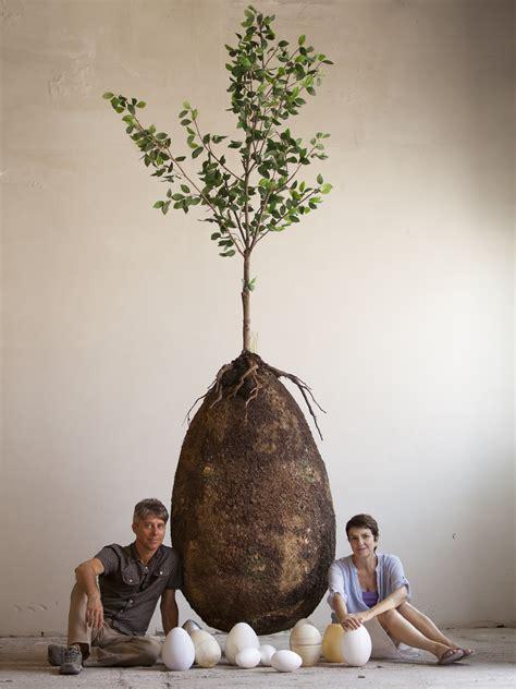 designers   turn  body   tree