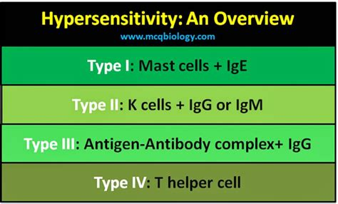 rype 4 secondary rype 2 multiple choice questions on hypersensitivity reactions
