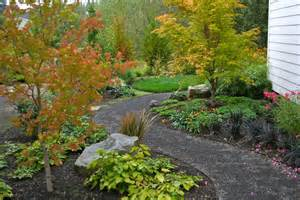 dazzling japanese maple coral bark fashion portland traditional landscape remodeling ideas with