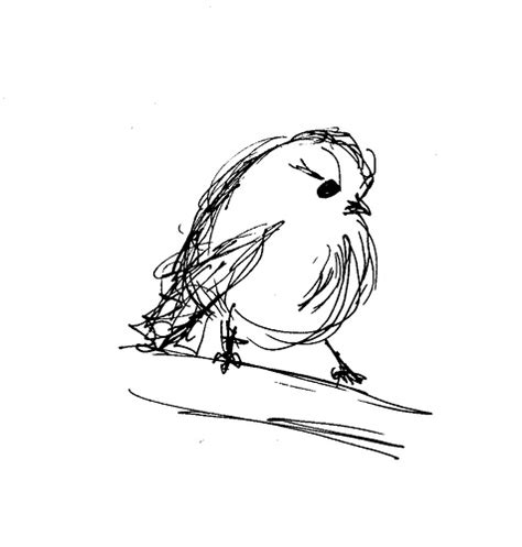 2 Minute Sketches by Christine 2 Minute Bird Sketches