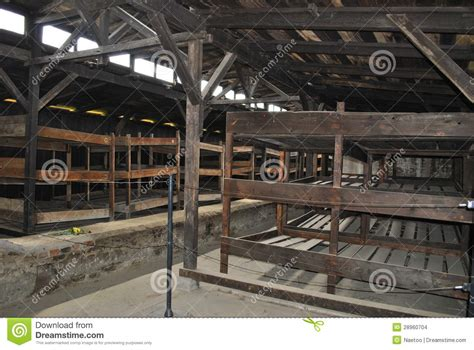 concentration c bunk beds wooden beds in barrack birkenau concentration c