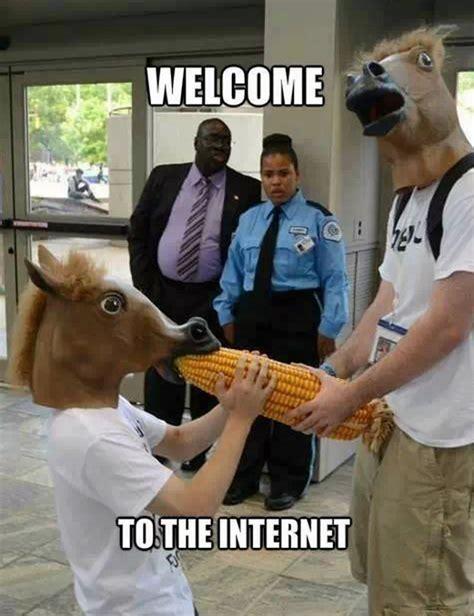 Horse Mask Meme - 3b4 png