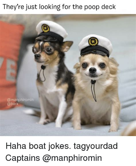 boat dog jokes 25 best memes about boat jokes boat jokes memes