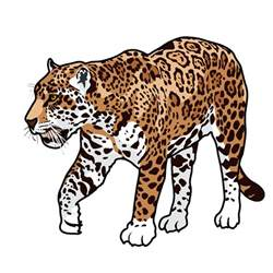 Artof Jaguar Jaguar Clip