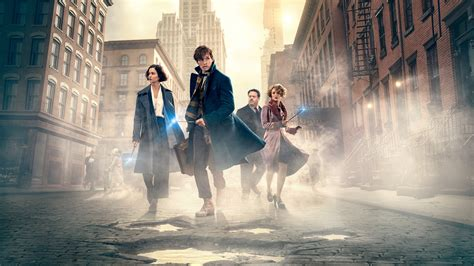 To Find Wallpaper Fantastic Beasts And Where To Find Them 2016 Hd 2540